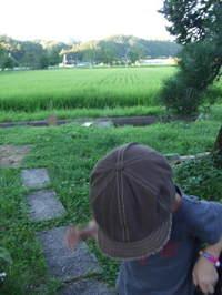 2007_08150057