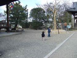 2008_01050095