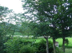 2008_07210236