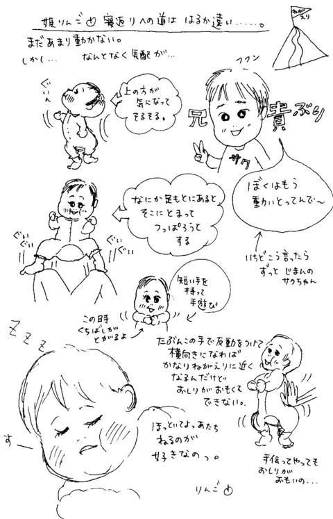 Negaeri_henomichi